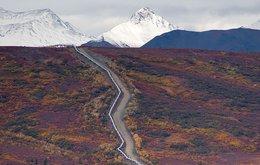 Project Icewine alaska