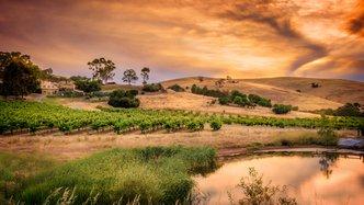 Auroch south australia progress update
