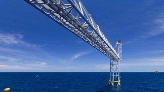 AVD to bid for Carribean acreage
