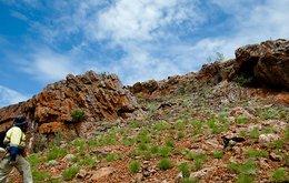 Millrose ELA Western Australia