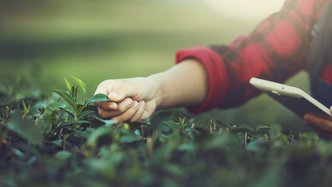 It's National Ag Day: here are 4 ASX ag-tech stocks climbing the beanstalk