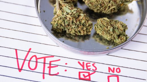 Personal cannabis use in Australia: is legalisation close?