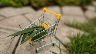 Creso Pharma's Mernova enters Canada's largest recreational cannabis market
