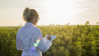 NTI secures strategic Cultivation partnership to grow and maintain its medical cannabis
