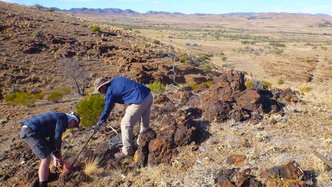 CXO Exploration Discovers High-Grade Mineralisation; Awarded $170,000