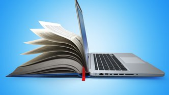 Online lessons sales strengthens Velpic's revenue model