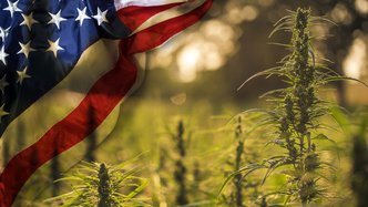 CropLogic leveraging booming US hemp market