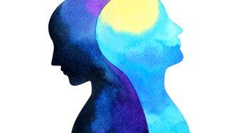 AHI to target active mental health industry