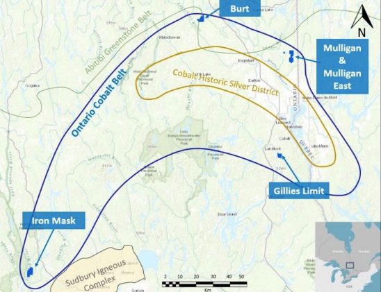 Iron musk cobalt project canada