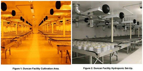MMJ Duncan Facility