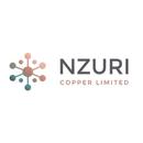 NZC company logo.png