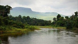 Okapi Resources stake in Amani Gold