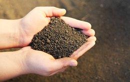 OKR soil sampling.jpeg