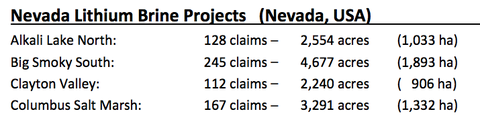Size and claims for RLC's lithium brine projects in Nevada.