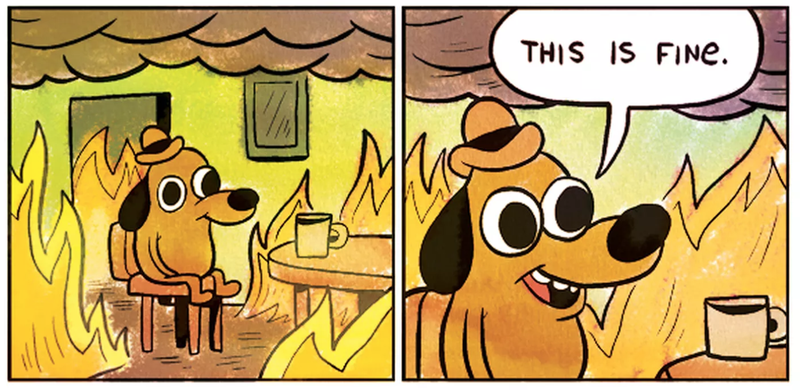 The internet's ever useful 'This is fine' dog meme.