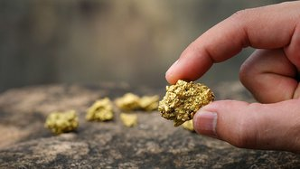 Vector targets gold trifecta in the Congo