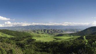 AVD - Peruvian Acreage