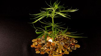 MMJ backs up intent with cash