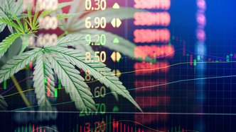 ANALYSIS-How cannabis is firing up investors & the US supply chain