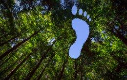 carbon footprint.jpeg