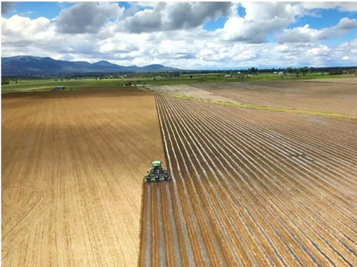 Drip Tape and Mulch Plastic being laid at field 'Hercules' (image taken with drone).