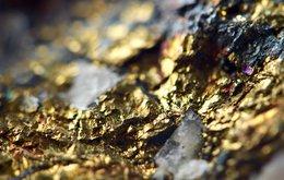 gold resource MZZ.jpeg