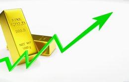 gold rise.jpeg