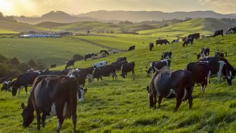 Keytone Dairy a healthy tonic in a tough market