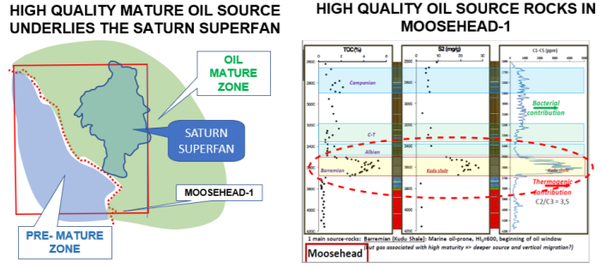The Moosehead-1 well provides accurate seismic ties.