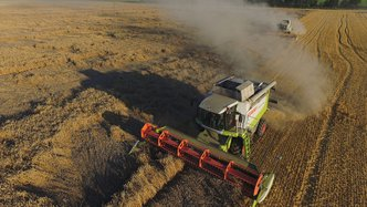 Greenpower Energy surges more than 50% on positive wheat trials